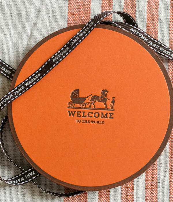 Hermes-Inspired-Baby-Announcement-Atheneum-Creative7