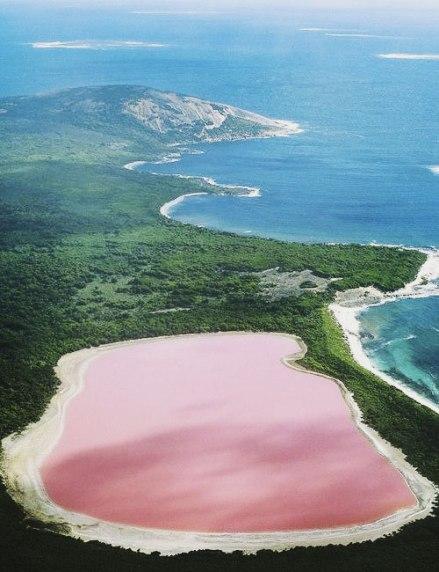 14-Hiller-or-Pink-Lake-Australia