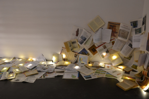 lionesa bairro dos livros letras de luz